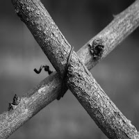 Una croce di legno segno di povertà che la Chiesa dovrebbe testimoniare secondo Tonino Bello