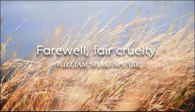 Farewell Fair cruelty Farewell Quotes