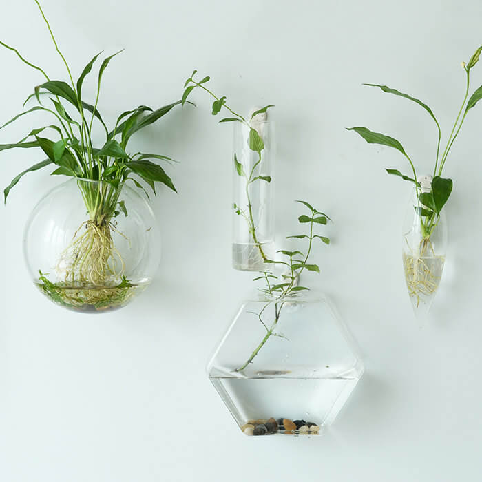 wall mounted glass hanging planters vertical garden indoor