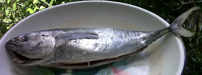 Resep Ikan Tuna Bumbu RW