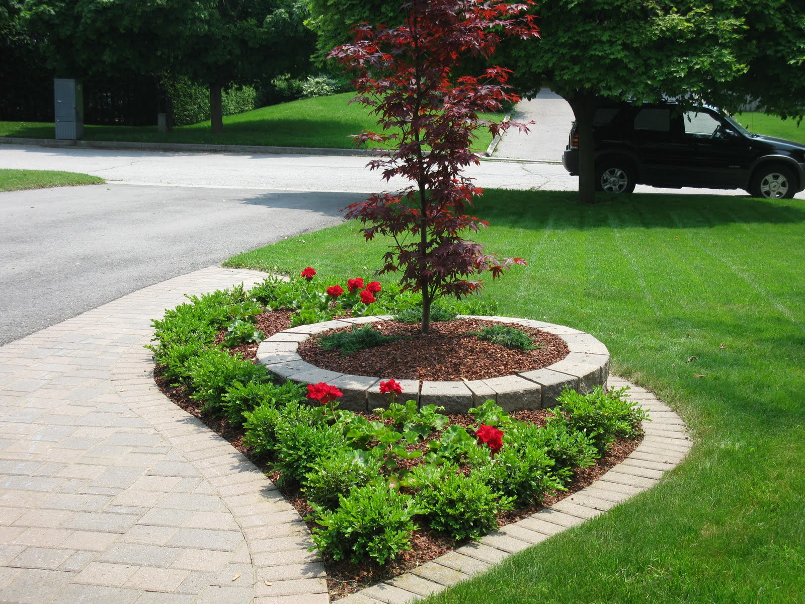 White Swan Homes And Gardens: Front Yard Makeover On Jones