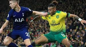 هاري كين ينقذ توتنهام من الخساره امام ونوريتش سيتي بالتعادل الاجابي في الدوري الانجليزي