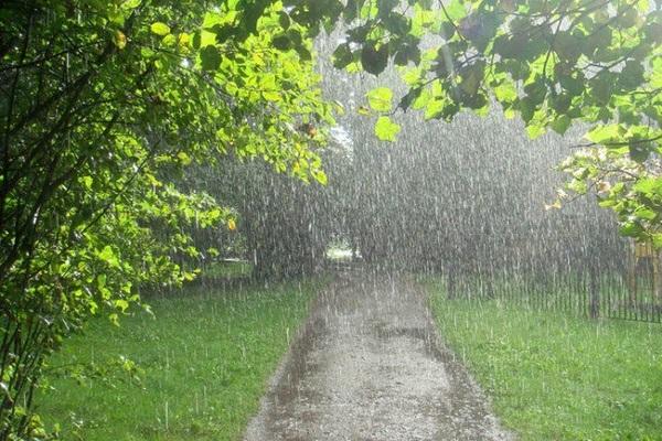 Свердловской области ожидаются грозы, крупный град, сильные дожди, усиление ветра до 20-25 м/с.