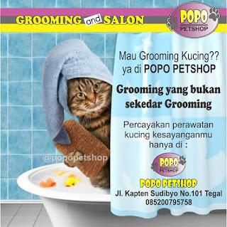 grooming popopetshop