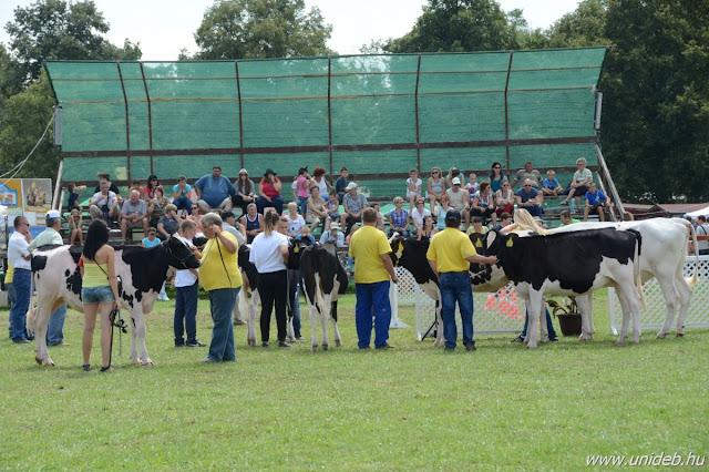 A Farmer-Expo szervezésében és lebonyolításában a kezdetek óta tevékenyen részt vesz a Debreceni Egyetem. Az intézmény idén sem pusztán a helyszínt, hanem az expo szakmai hátterét is biztosítja. A magas szakmai színvonalú állatbemutatók például több mint 20 éve az Állattenyésztési Tanszék munkatársainak segítségével valósulnak meg.