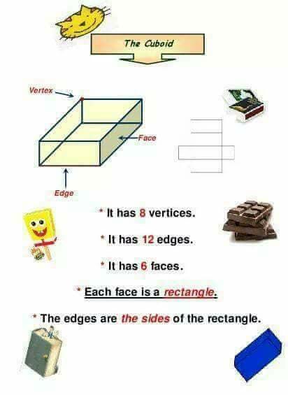 شرح المجسمات solids ماث الصف الثاني ترم اول 3