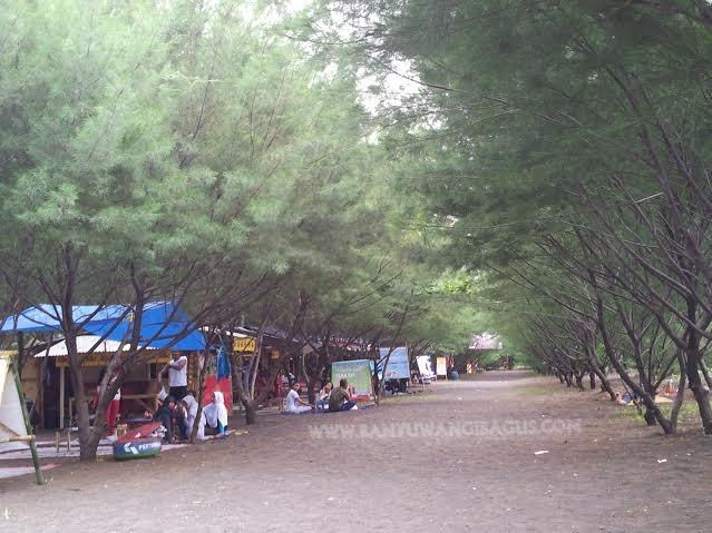 Pantai Cemara Pakis Banyuwangi.