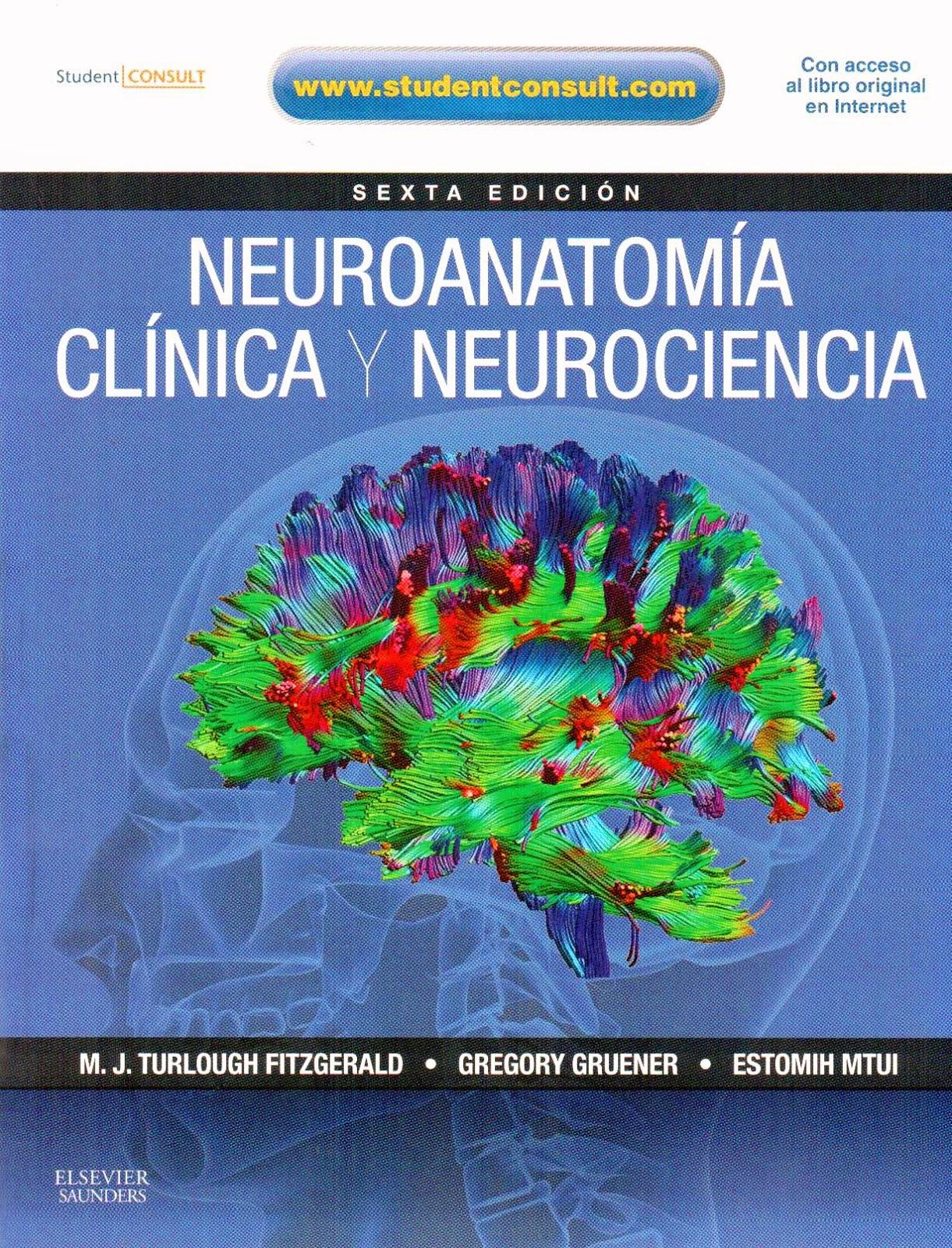 Neuroanatomía Clínica y Neurociencia Fitzgerald | booksmedicos