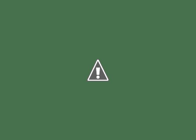 """Une fois connecté(e) avec votre compte Google, à la page suivante, vous cliquez sur l'onglet de navigation """"Zones géographiques"""", puis sur le lien """"Ajouter une seule adresse"""" dans la partie centrale de la page."""