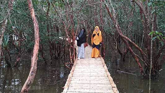 Jembatan Suak Oyek di danau laet
