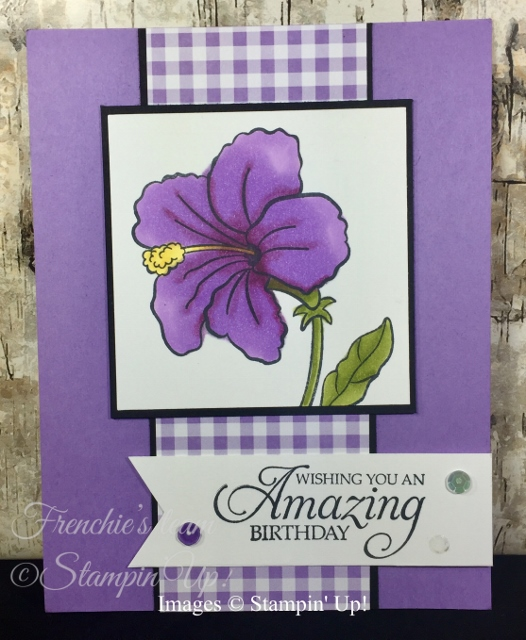 Card, Humming Along, Birthday, Gingham Gala, Stampin Up,