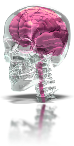 Brain Stroke-Myths and Realities