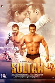 Sultan (2016) Bollywood Movie