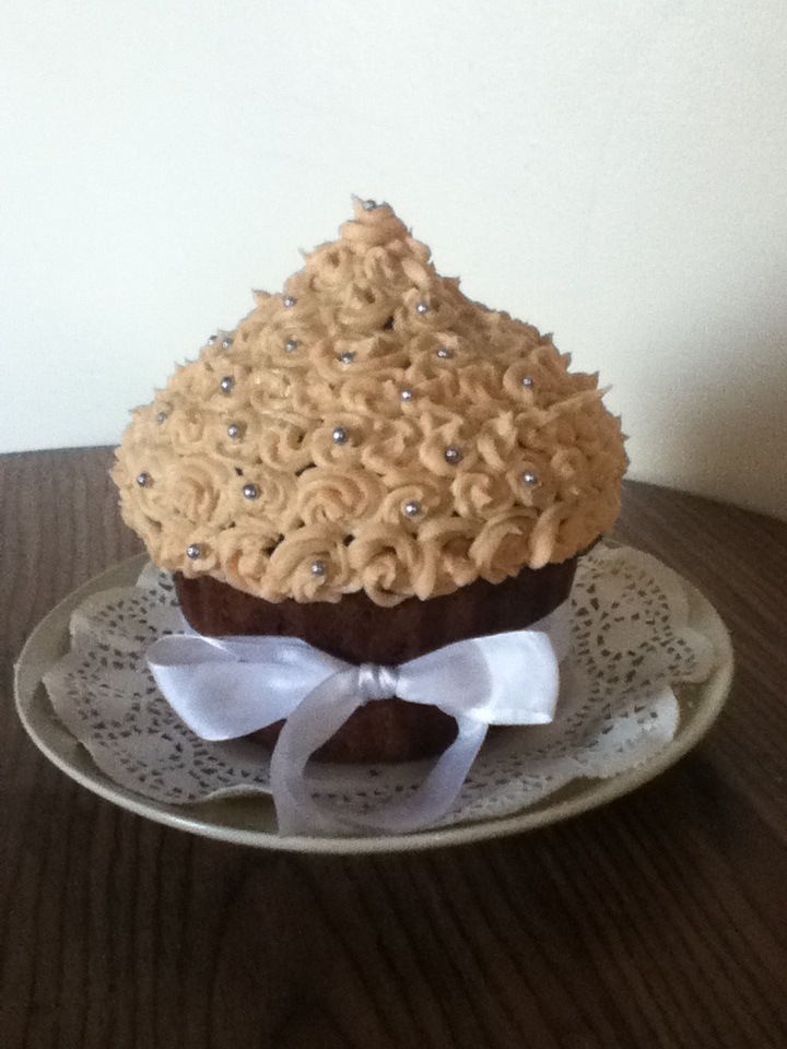 Knit And Make Mary Berry Giant Spiced Christmas Cupcake
