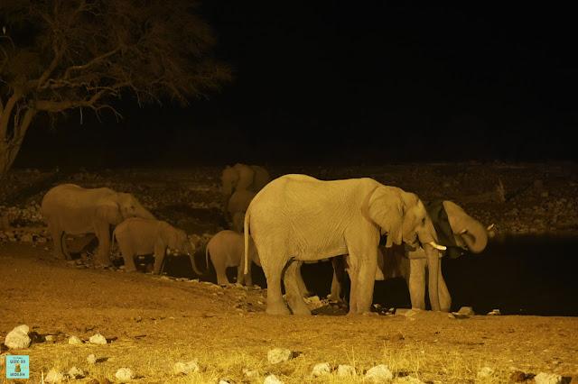 Okakuejo, Parque Nacional de Etosha (Namibia)