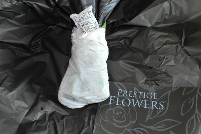 Prestige-Flowers-luxury-bouquet-teal-stems-wrapped-in-damp-padding-with-flower-food