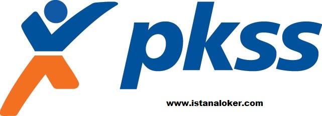Lowongan Kerja Walk In Interview PKSS (Group BRI) Seluruh Indonesia