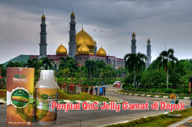 Penjual QnC Jelly Gamat di Depok