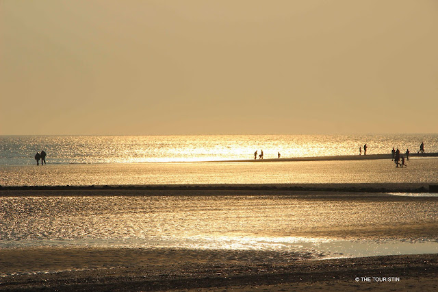 People walking in the golden light of sunset through the UNESCO heritage listed Wadden sea.