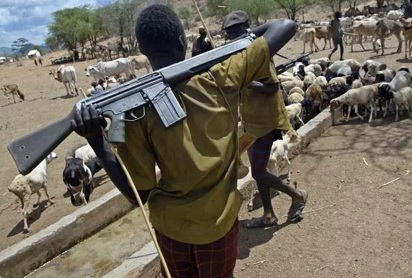 Military to launch operation against violent herdsmen – Defence Spokesman