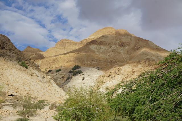 הר צרויה ליד שמורת נחל דוד