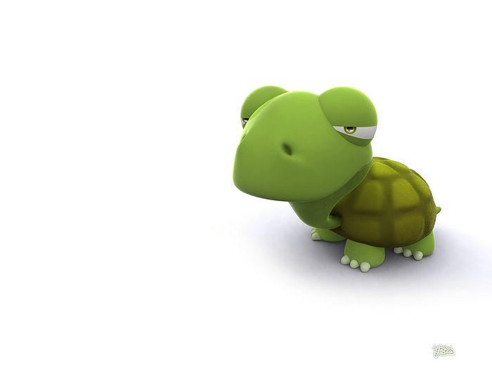 Cute Funny Puppies Wallpapers Funny Turtle Wallpaper Desktop Funny Animal