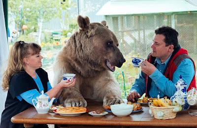 Parábola Os Viajantes e o Urso