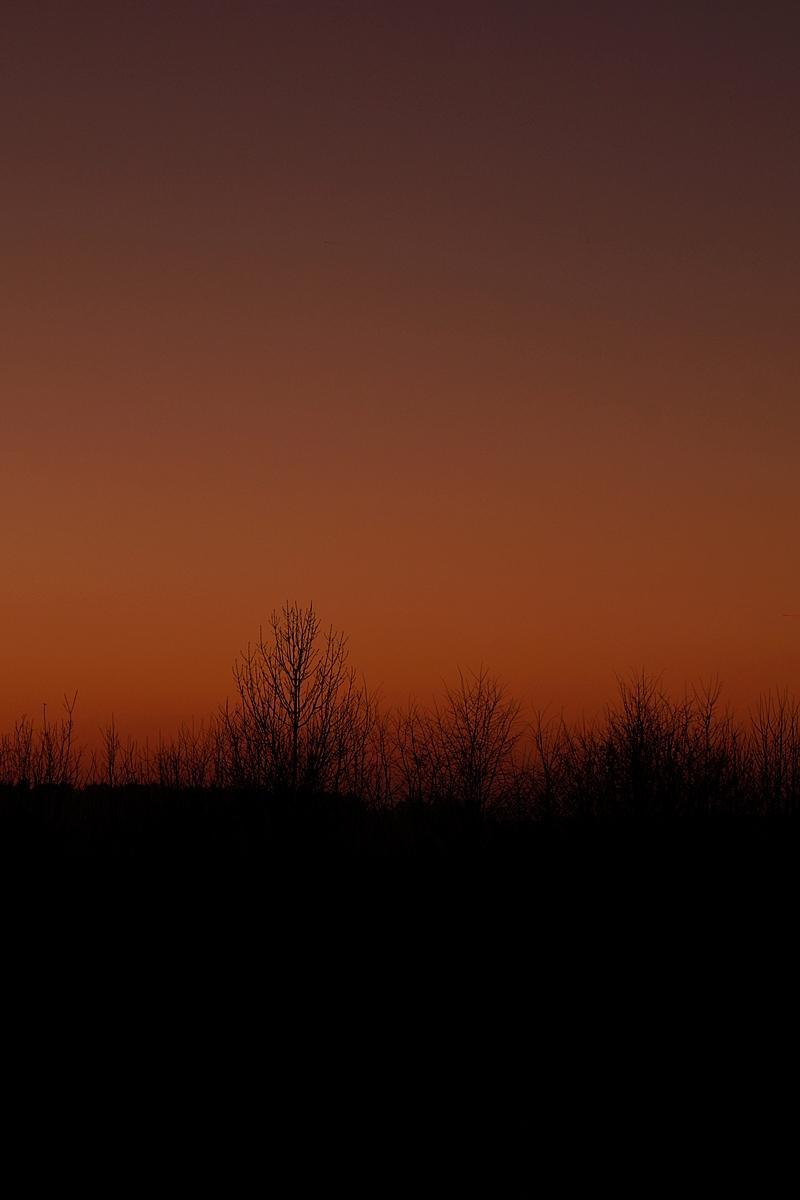 Dark evening sky in winter after sunset // Dunkler Abendhimmel im Winter