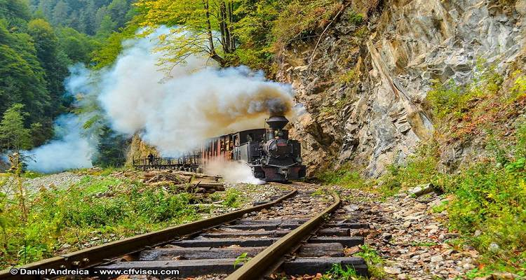 The last active forest railway in the Carpathians - Mocanita, Vișeul de Sus