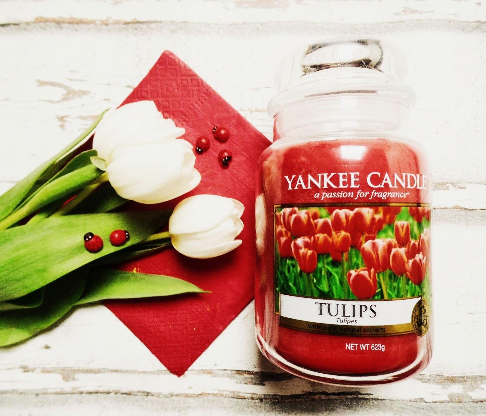 Tulips Yankee Candle  recenzja