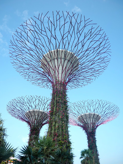 Silver Grove Supertrees, Gardens by the Bay, Singapore