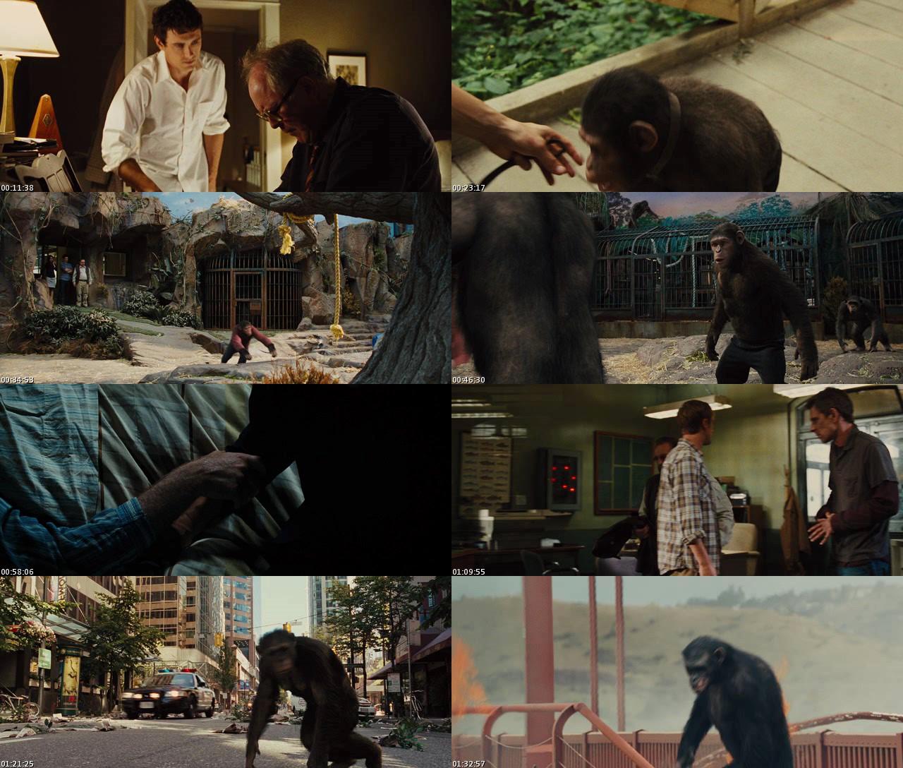 El origen del Planeta de los Simios (2011) [DVDRip] [Latino]