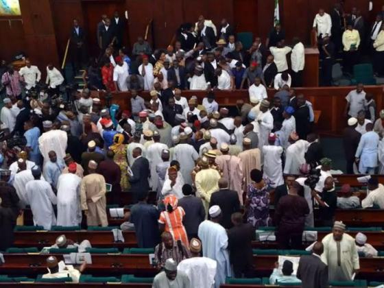 House of Representatives in a rowdy session as members reject bill to establish South-East Development Commission