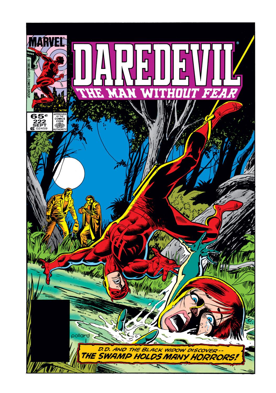 Daredevil (1964) 222 Page 0