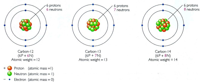 Isotopes and Atomic Mass - Isotopes