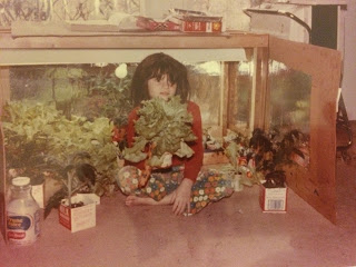 Girl in front of light-box with lettuces and other plants