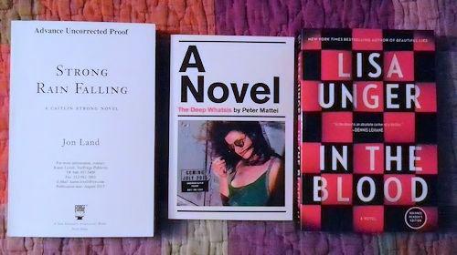 BookExpo America 2013 - The Books