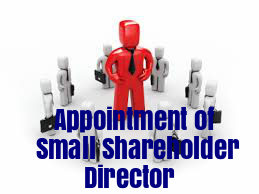Resolution-Appointment-Small-Shareholder-Director