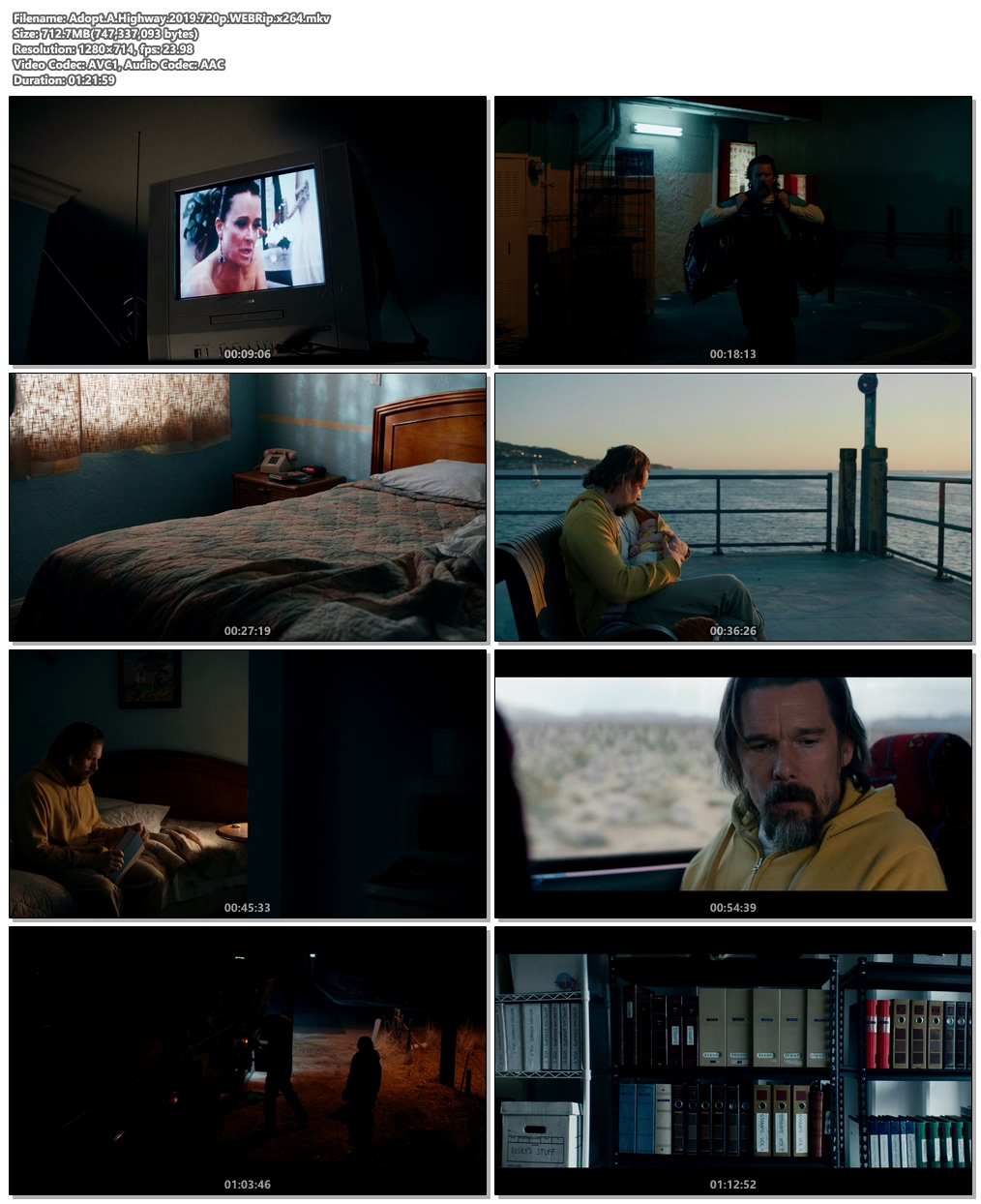 Adopt A Highway 2019 720p WEBRip x264 | 480p 300MB | 100MB HEVC Screenshot