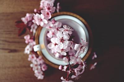 50 pomysłów na to, co robić wiosną!