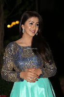 Nikki Galrani in Green Skirt  Top at Marakathamani music launch ~  Exclusive (90).JPG