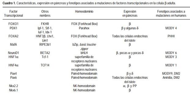 asociación de diabetes ipf1