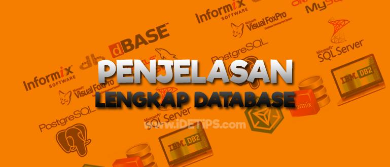 Apa itu Database : Pengertian , Fungsi , Macam atau jenis - jenis database
