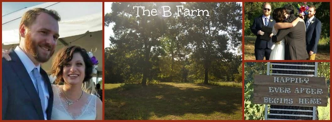 The B Farm Farm Laundry Room Wall