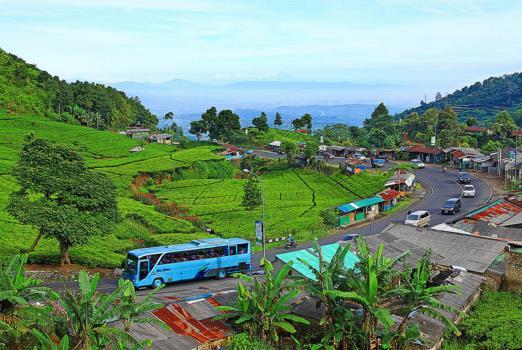 Hari Biasa Waktu Yang Pas Berwisata Kepuncak Bogor