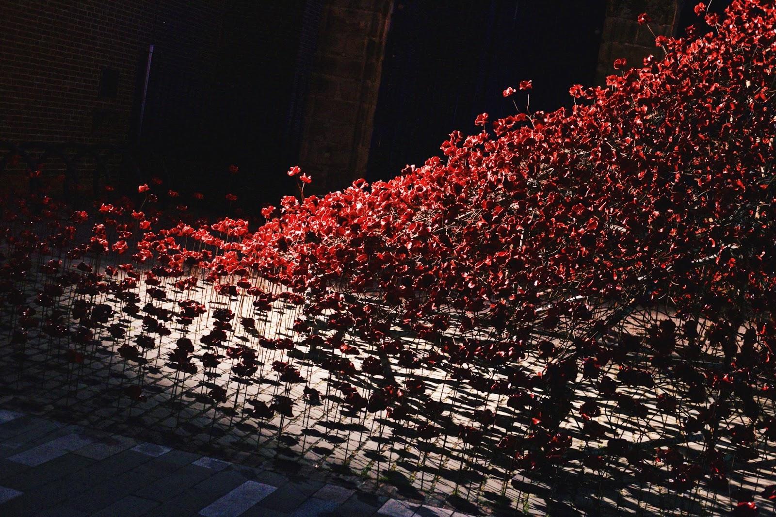 Derby, Derbyshire, Weeping Window, Poppies Derby, Poppies, First World War, Silk Mill, Katie Writes Blog, Katie Writes,