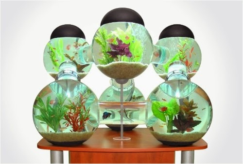 01-Labyrinth-Maze-Aquarium-Fish-Tank-Opulentitems-www-designstack-co