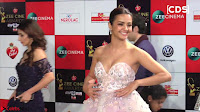 Surveen Chawla at Zee Cine Awards 2017 ~  Exclusive Galleries 013.jpeg