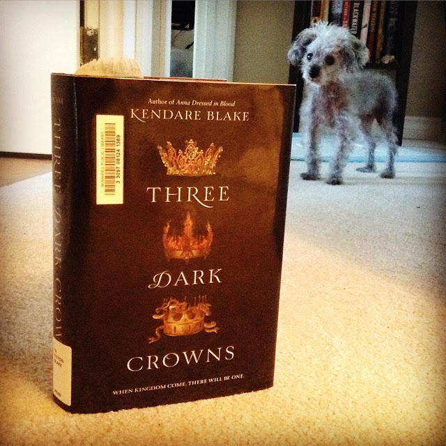 Murchie stands at the end of a long, beige-carpeted hallway. In front of him, close to the camera, is an upright hardcover copy of Three Dark Crowns. Its black cover features three golden crowns adorned with flowers, flames, and a snake, from top to bottom.
