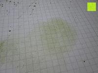 Pulver auf Papier verwischen: 100g Original Japanischer BIO Matcha Pulver aus Uji Japan - Für Grüntee-Latte, Coldbrew Matcha, Smoothies, Backen. 0,16/Portion